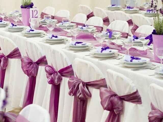 Sillas banquete - 3