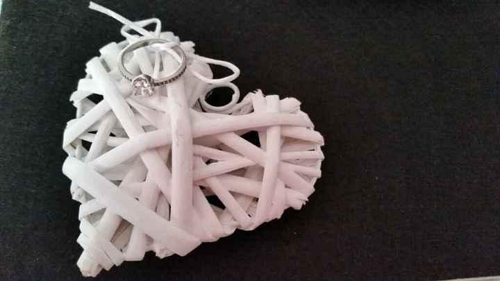 Sustitucion a los cojines de los anillos - 1