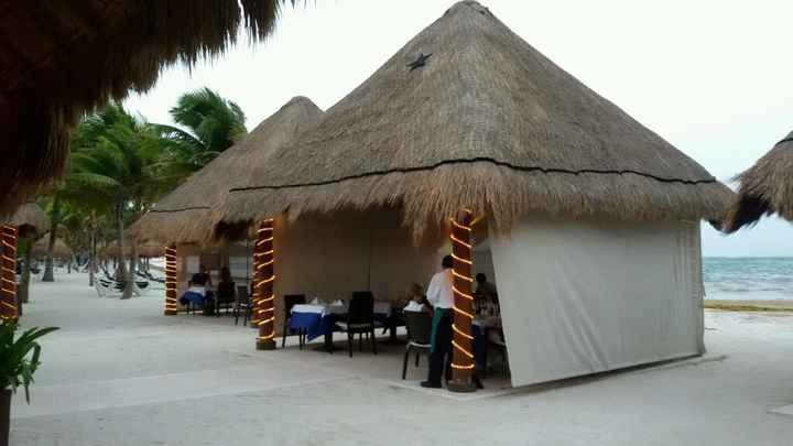 Mi experiencia en hoteles palladium riviera maya - 6