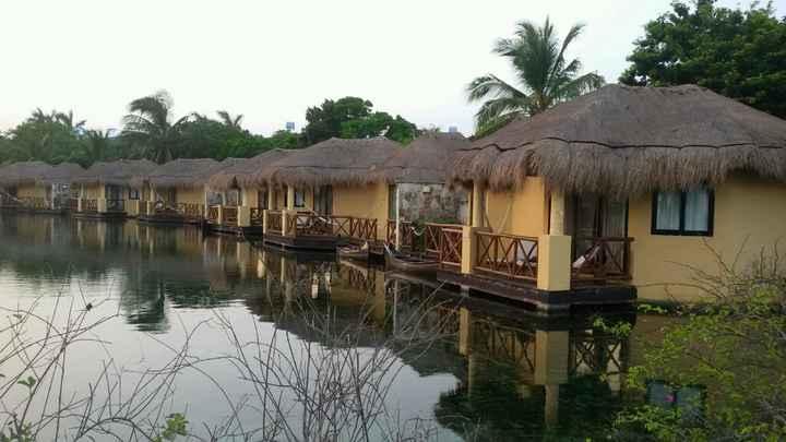 Mi experiencia en hoteles palladium riviera maya - 9