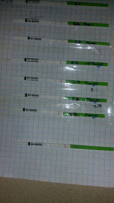 Gráficas de temperatura con positivo 2