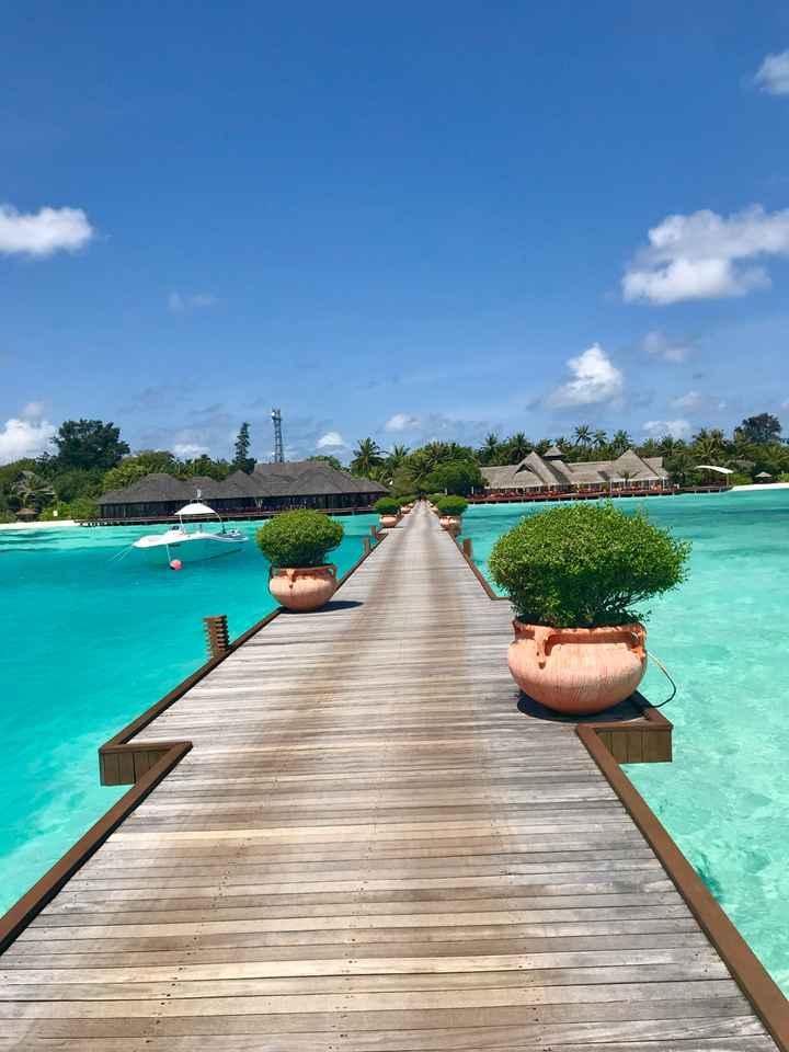 Olhuveli resort and spa (maldivas) - 5