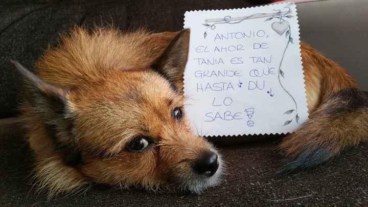 para Antonio de Tania
