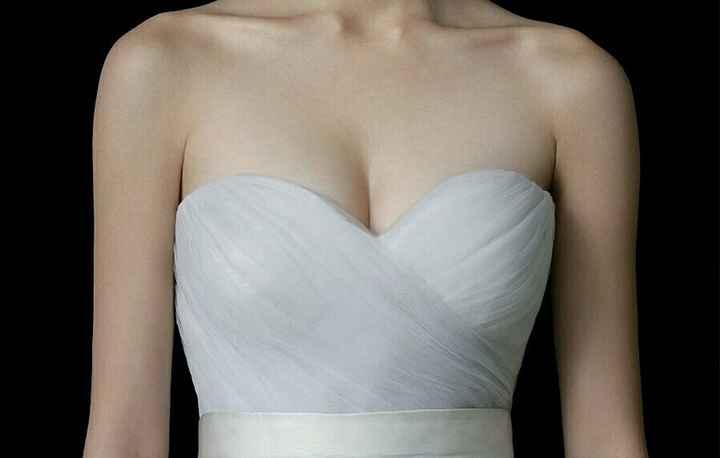 Modificación del vestido - 2