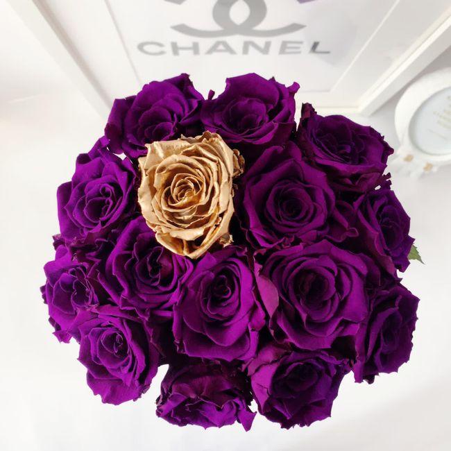 Siempre con ilusión, llegan las flores 😊 🌹 1