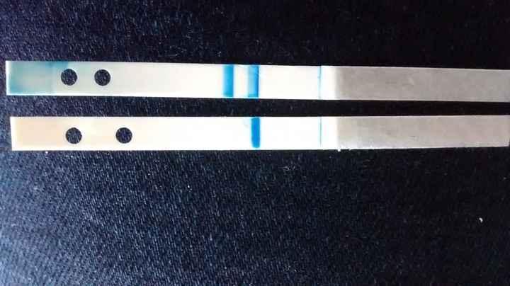 Clearblue +3semanas