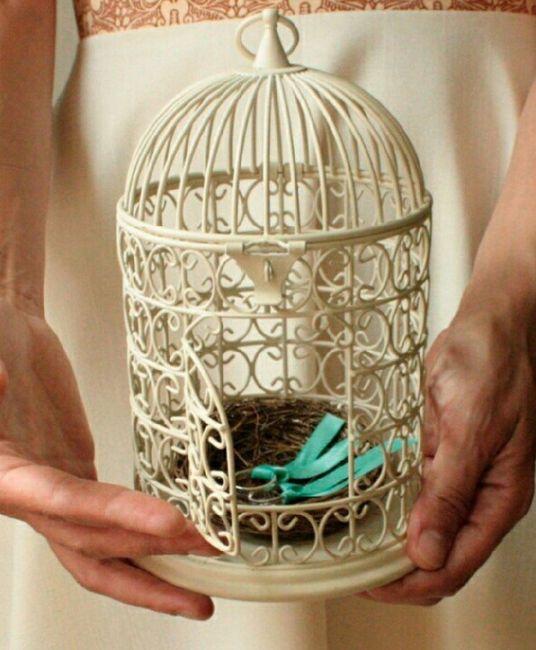 Meter los anillos en un nido????? - 1