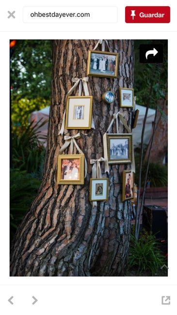Decorar arbol/tronco para ceremonia 7