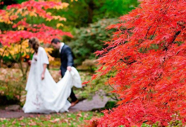A alguien mas le encanta el otoño!!! 1