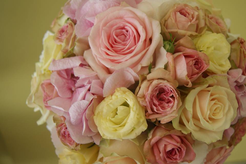 Pom de Flors