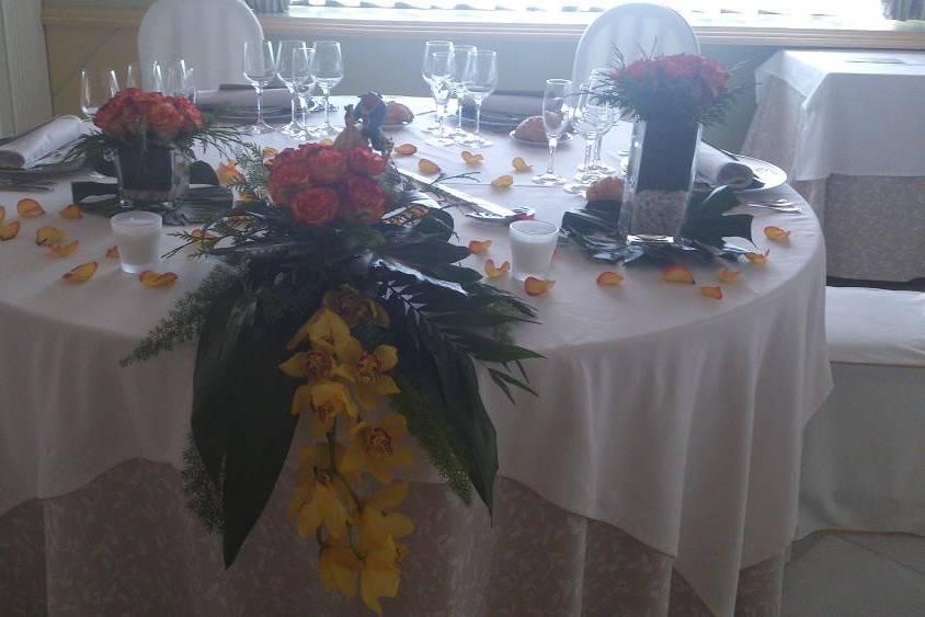 Anabel Flores y plantas