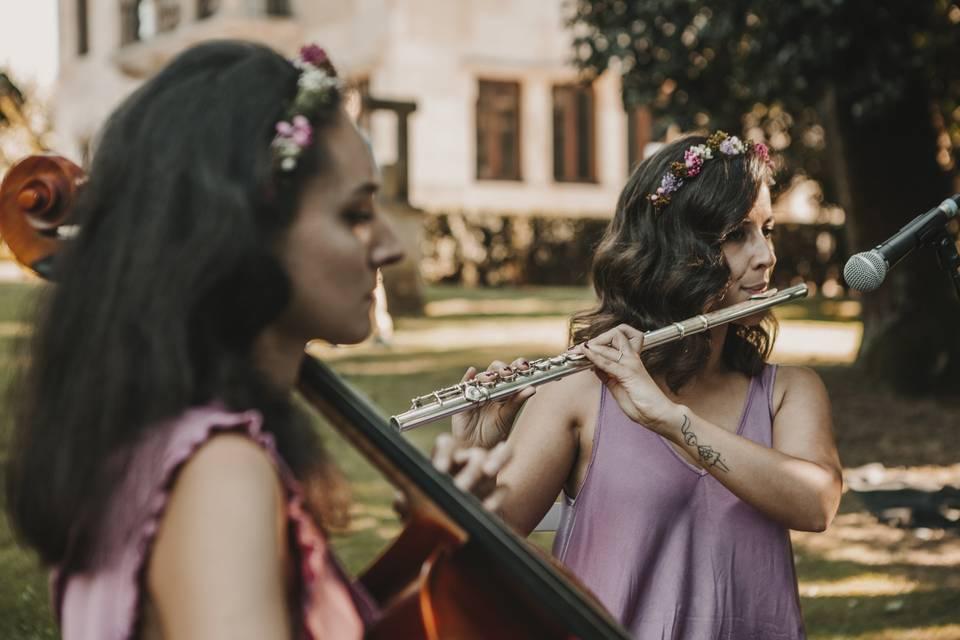 Violoncello y flauta