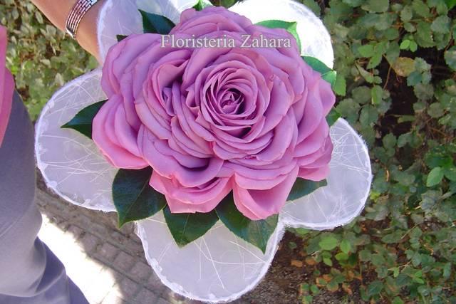 Zahara Floristas