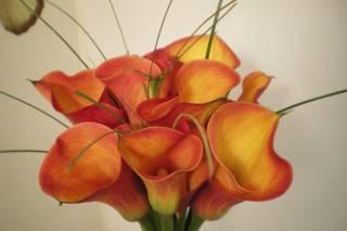 Arte Floral Lafabre