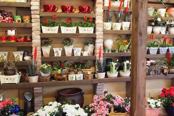 Asturflora Floristas