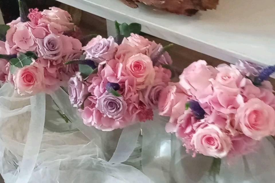 Edelweiss Floristas