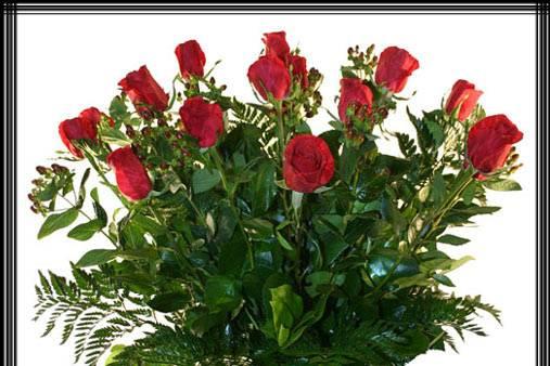 Composición de rosas ecuatorianas
