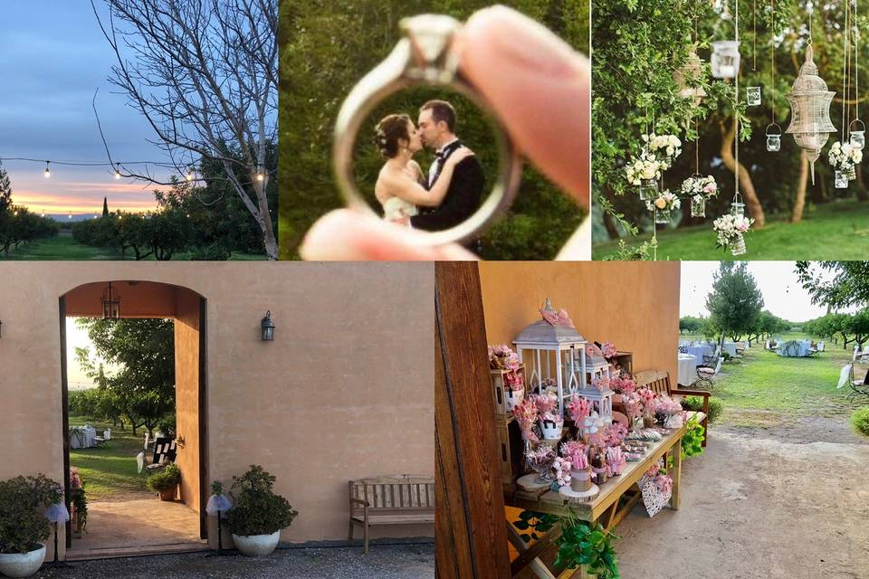 Tu boda al aire libre