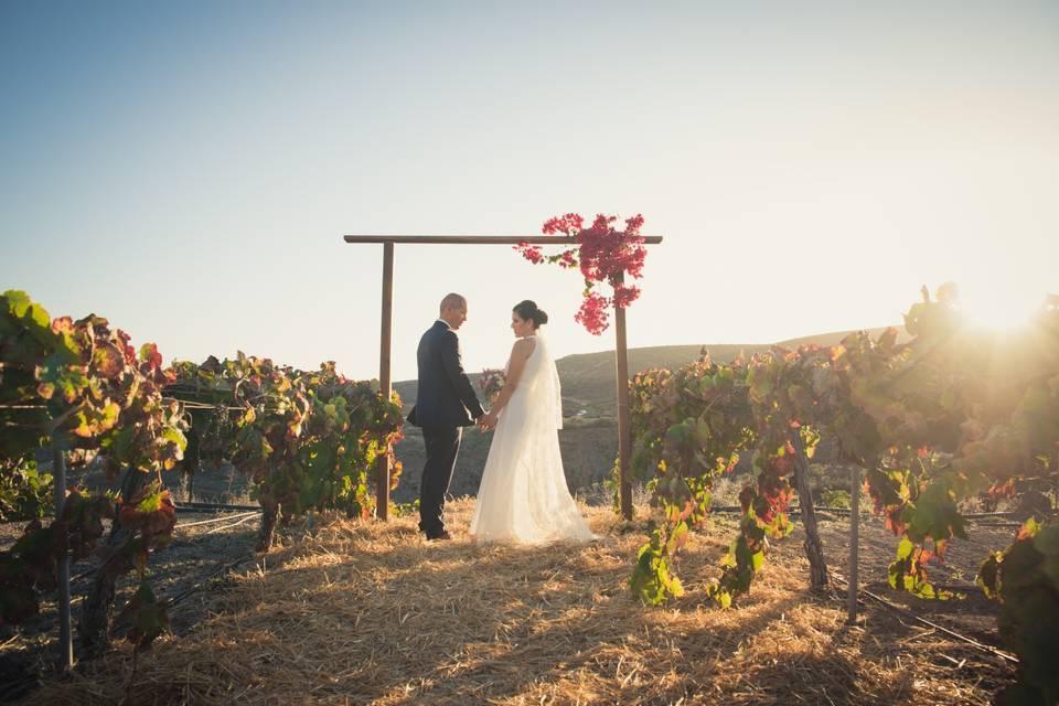 Altar entre viñedos