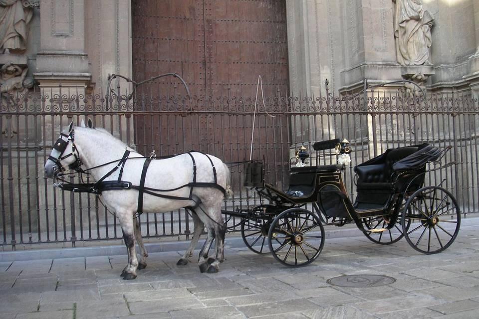 Ángel Cobos - Coches de caballos