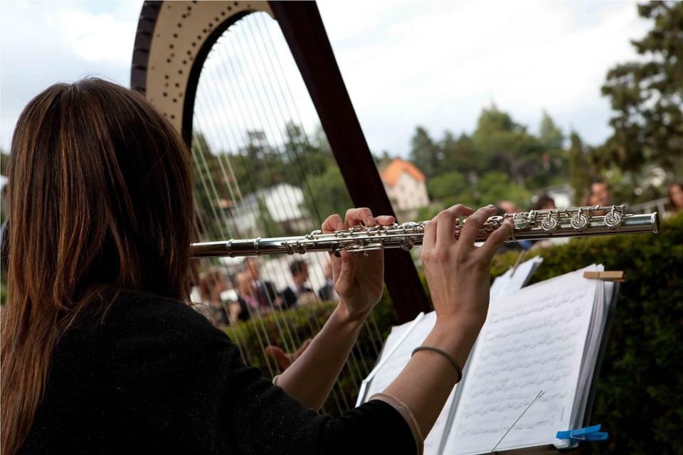 Arpa y flauta