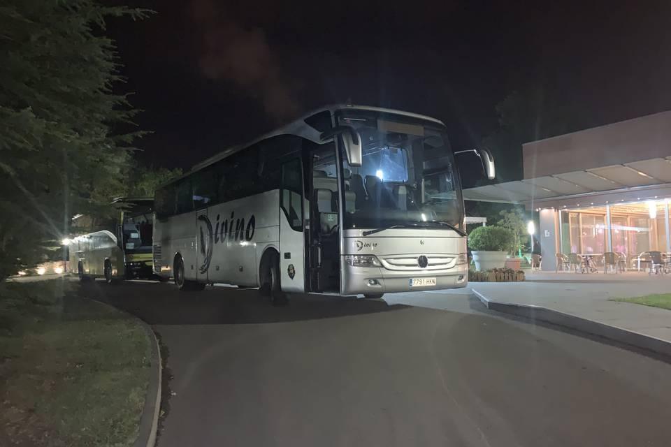 Transportes Divino
