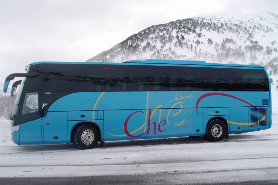 Autobuses Che