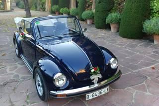 My Little Wedding Beetle