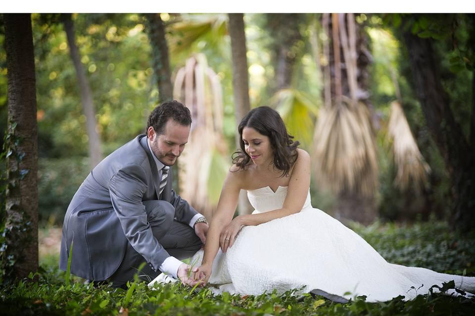 Sugar Wedding
