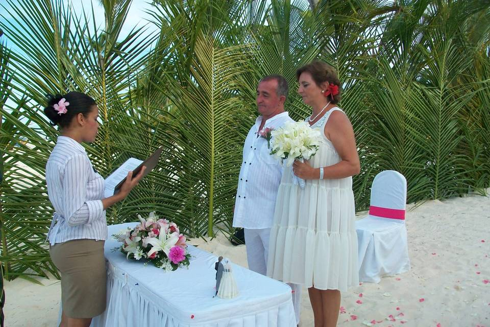 Wedding Planner Star