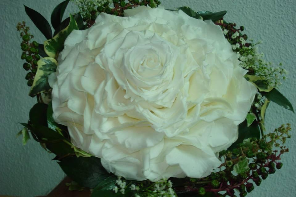 Roser Floristas