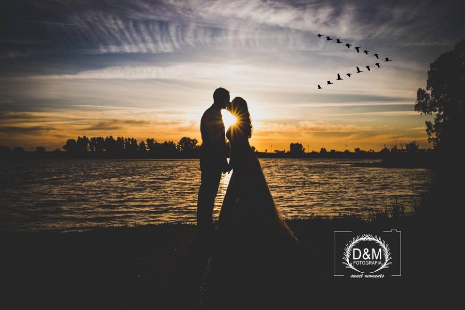 D&M Fotografía y Vídeo