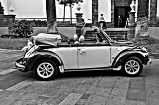 Guillermo - Volkswagen Beetle Cabrio