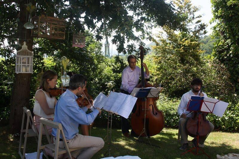 Boho String Ensemble