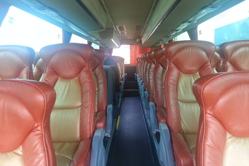 Autobuses vip