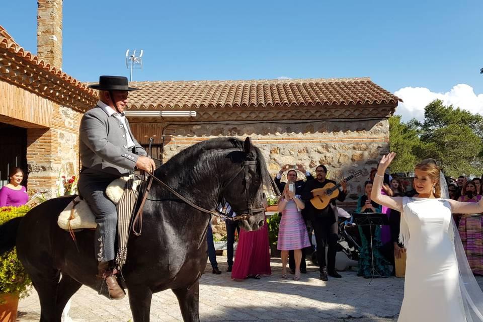 Baile de caballo y novia