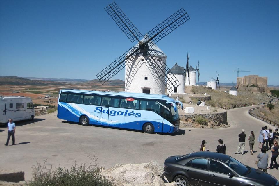 Autobús hasta 55 plazas