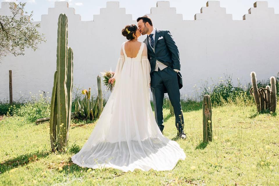 Cactus y amor