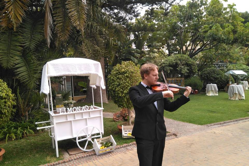 Christopher James Owen - Violinista
