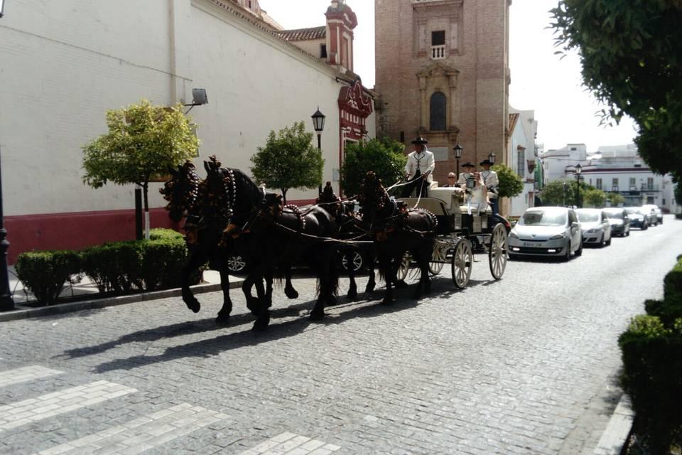 Picadero Rocío Cazorla - Coche de caballos