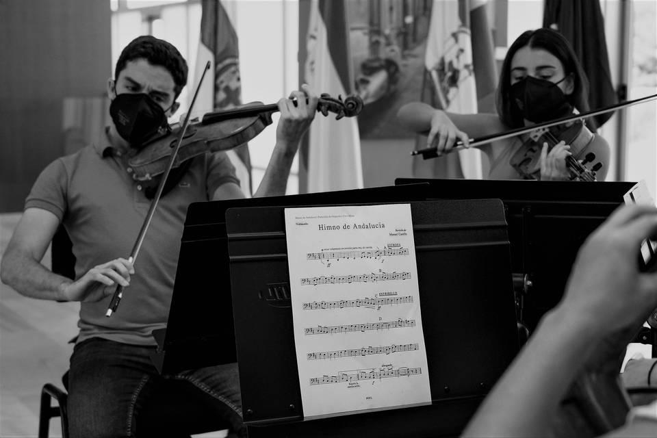 Dúo violín y viola
