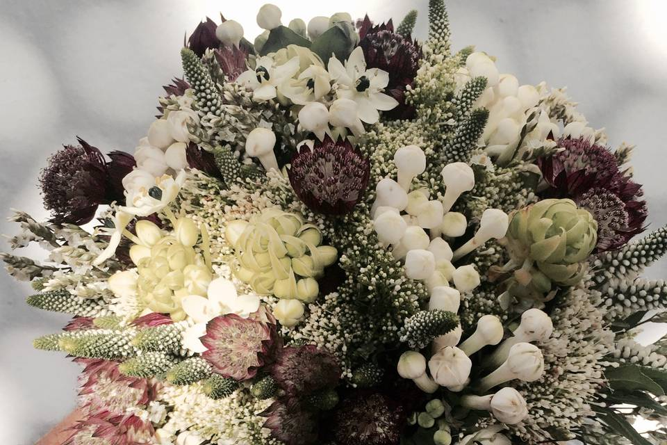 Amaranto Flors