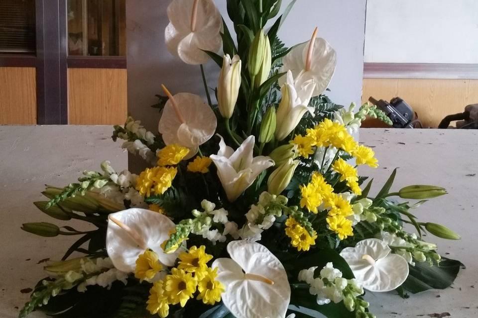 Flores Trevin