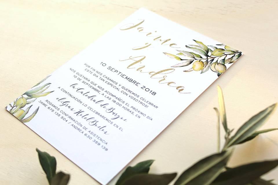 Invitaciones ramas de olivo