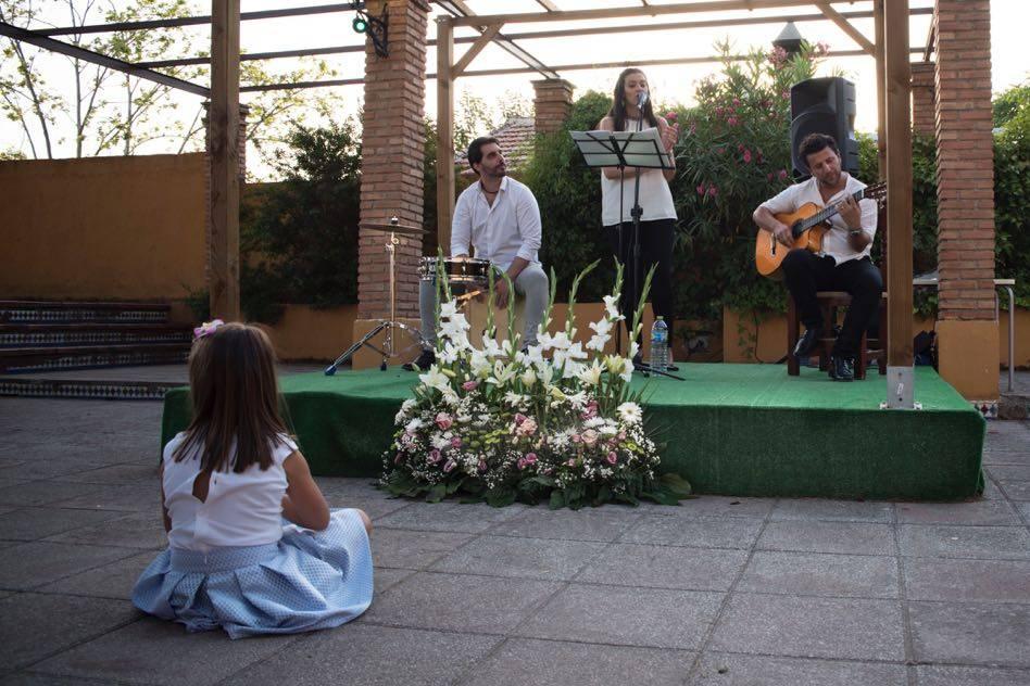 Flamenco Konfusión